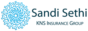 SandiLogoBramptonInsuranceCompany1